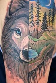狼纹身 男生手臂上狼纹身图片