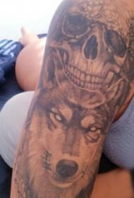 骷髅和狼纹身图案  男生手臂上骷髅和狼纹身图片
