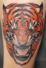 老虎头纹身图案 男生小腿上彩色的老虎纹身图片