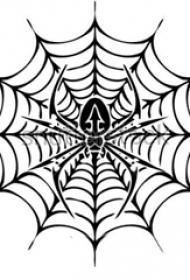 蜘蛛网纹身手稿 规则的蜘蛛和蜘蛛网纹身手稿