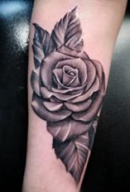 纹身玫瑰花  女生小臂上黑灰色的玫瑰花纹身图片