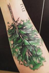 树纹身 女生手臂上彩色的大树纹身图片