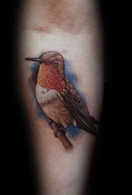 纹身鸟   栩栩如生的蜂鸟纹身图案