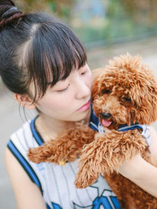 爱上狗狗的可爱少女