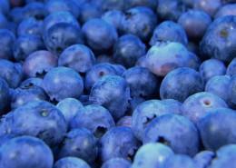 小巧精致的蓝莓图片(9张)