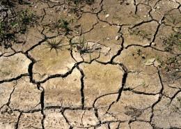 干旱的土地图片(14张)
