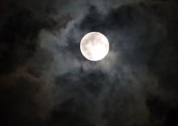 皎洁的月亮图片(14张)