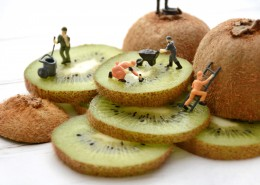 酸甜可口的猕猴桃切片图片(9张)