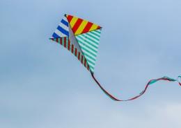 天空中的风筝图片(10张)