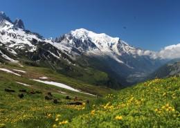 瑞士阿尔卑斯山风景图片(16张)