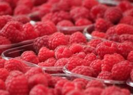 又红又甜的山莓图片(12张)