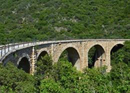 坚固的桥梁图片(12张)