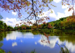 清迈自然风景图片(10张)