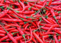 红色辣椒图片(15张)