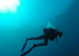 海底潜水人物图片(12张)