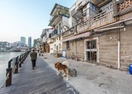 厦门沙坡尾城市风景图片(10张)