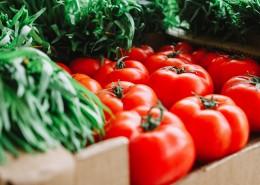 新鲜美味的番茄图片(10张)