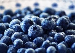 清香可口的蓝莓图片(13张)
