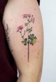 胳膊上小清新风格的小花卉纹身图片9张