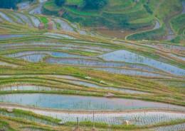 贵州黔东南苗族侗族自治州肇兴侗寨自然风景图片(9张)