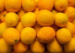 清爽的柠檬图片(11张)