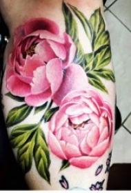 彩色花朵纹身 唯美妖艳的彩色花卉包臂纹身图案