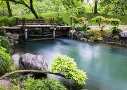 杭州西湖九溪十八涧自然风景图片(8张)