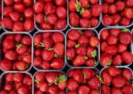 鲜红欲滴的草莓图片(11张)