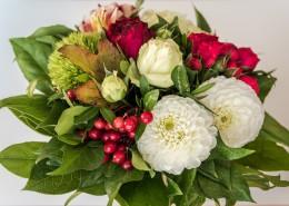 一束美丽的鲜花图片(15张)