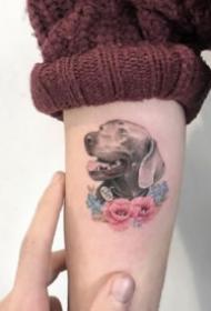 可爱小动物纹身 9款漂亮的彩色唯美小动物纹身图片