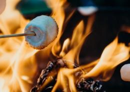 烤棉花糖的图片(10张)