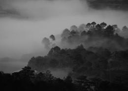 烟雾缭绕的山林图片(10张)