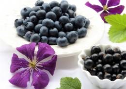 餐盘中的蓝莓图片(12张)