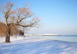 冬天唯美的雪景图片(11张)