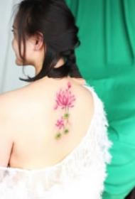 女生的一组粉色系小花花纹身图片