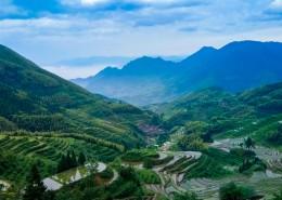 浙江丽水云和梯田风景图片(9张)