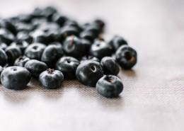 抗氧化功效强大的蓝莓图片(11张)