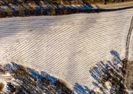 冬季的田野图片(8张)