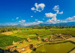 广袤的农田图片(11张)