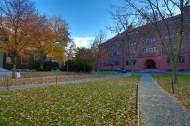 美国哈佛大学校园风景图片(17张)
