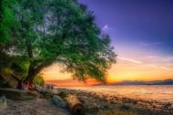 加拿大温哥华基斯兰奴海滩傍晚风景图片(6张)