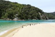 新西兰阿贝尔·塔斯曼国家公园风景图片(16张)