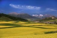 青海祁连山风景图片(9张)