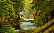 美国俄勒冈州自然风景图片(10张)