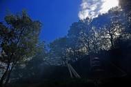 浙江华岩山风景图片(10张)