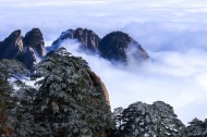安徽黄山风景图片(18张)