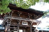 日本明治神宫的图片(11张)