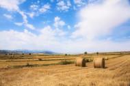 新疆江布拉克秋天的麦田风景图片(8张)