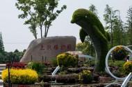 上海植物园风景图片(10张)