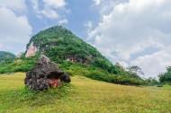 广西德保红枫森林公园风景图片(9张)